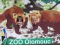 olomouc_09